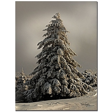 Trademark Fine Art Lois Bryan 'Tifted Titmous in Winter' Canvas Art