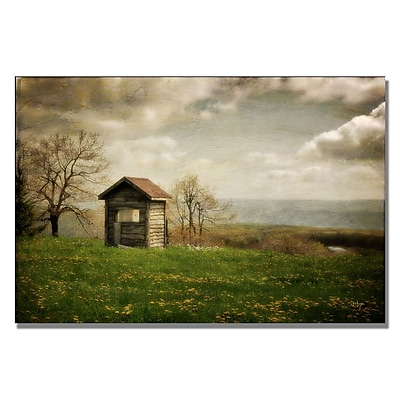 Trademark Fine Art Lois Bryan 'Room With a View' Canvas Art 16x24 Inches