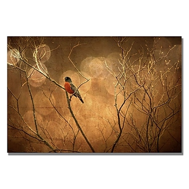 Trademark Fine Art Lois Bryan 'The Robin' Canvas Art 30x47 Inches