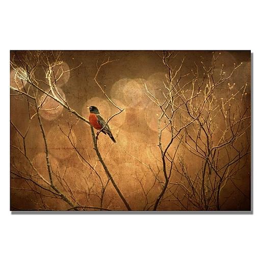 Trademark Fine Art Lois Bryan 'The Robin' Canvas Art 22x32 Inches