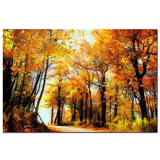 Trademark Fine Art Lois Bryan 'Golden Day' Canvas Art Ready to Hang 14x19 Inches
