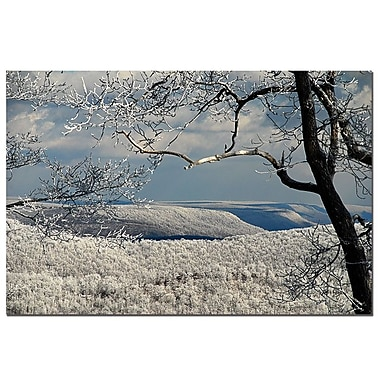 Trademark Fine Art Lois Bryan 'Winter Scene' Canvas Art 14x19 Inches