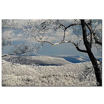 Trademark Fine Art Lois Bryan 'Winter Scene' Canvas Art Ready to Hang 35x47 Inches