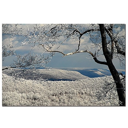 Trademark Fine Art Lois Bryan 'Winter Scene' Canvas Art Ready to Hang 18x24 Inches