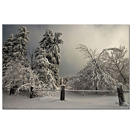Trademark Fine Art Winter Scene II by Lois Bryan-Canvas Ready to Hang 16x24 Inches