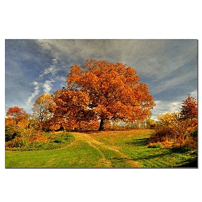 Trademark Fine Art Lois Bryan 'Fall Scene' Canvas Art Ready to Hang 14x19 Inches