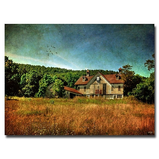 Trademark Fine Art Lois Bryan 'Old Barn in Golden Afternoon Light' Canvas Art 16x24 Inches