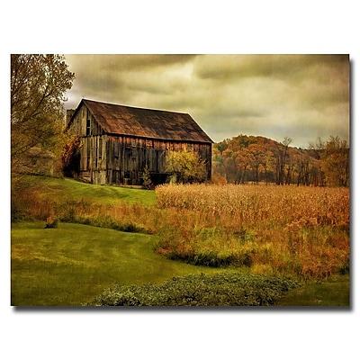Trademark Fine Art Lois Bryan 'Old Barn on Rainy Day' Canvas Art 30x47 Inches