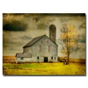 Trademark Fine Art Lois Bryan 'Ikd Barn on Stormy Afternoon' Canvas Art 22x32 Inches