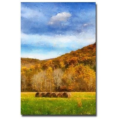 Trademark Fine Art Lois Bryan 'Harverst' Canvas Art 16x24 Inches