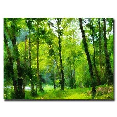 Trademark Fine Art Lois Bryan 'Forest Walk in Spring' Canvas Art 22x32 Inches
