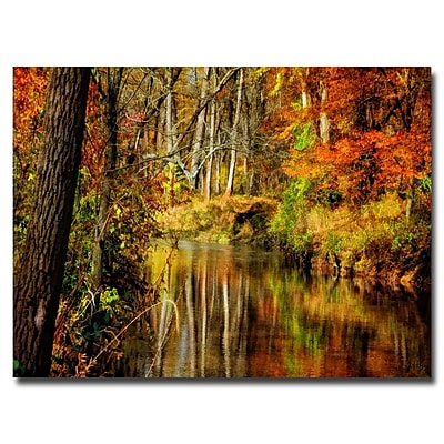 Trademark Fine Art Lois Bryan 'Bob's Creek' Canvas Art 22x32 Inches