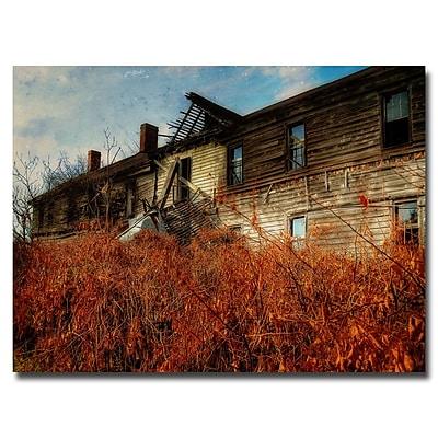 Trademark Fine Art Lois Bryan 'Forgotten Hotel' Canvas Art 30x47 Inches