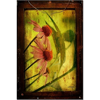 Trademark Fine Art Antiqued Cone Flowers by Lois Bryan Canvas Art 16x24 Inches
