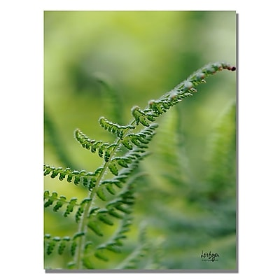 Trademark Fine Art Lois Bryan 'Fern' Canvas Art 30x47 Inches