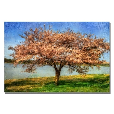 Trademark Fine Art Lois Bryan 'Cherry Tree' Canvas Art 22x32 Inches