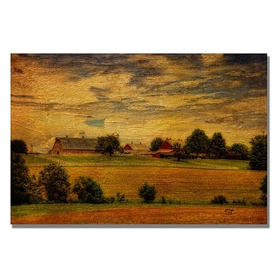 Trademark Fine Art Lois Bryan 'Family Farm' Canvas Art 16x24 Inches