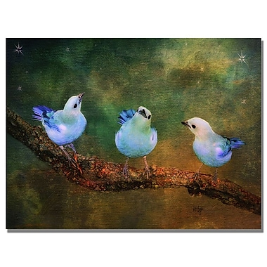 Trademark Fine Art Lois Bryan 'Three Little Blue Birds' Canvas Art 30x47 Inches