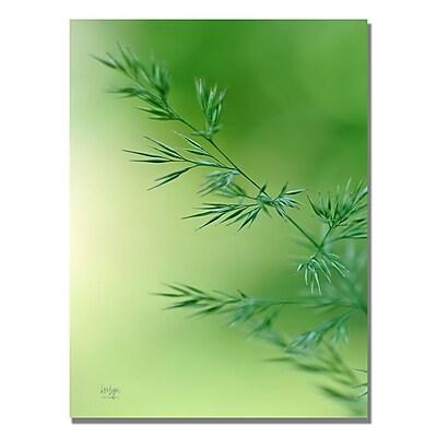 Trademark Fine Art Lois Bryan 'Keep Green' Canvas Art 30x47 Inches