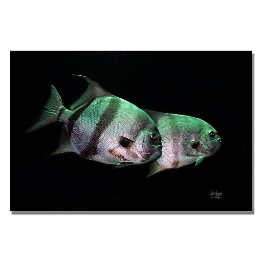 Trademark Fine Art Lois Bryan 'Fish in the Dark' Canvas Art 22x32 Inches