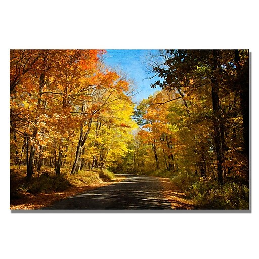 Trademark Fine Art Lois Bryan 'Fall Walkway' Canvas Art 35x47 Inches