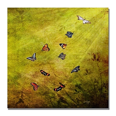 Trademark Fine Art Lois Bryan 'Butterfly in the Sky' Canvas Art 14x14 Inches