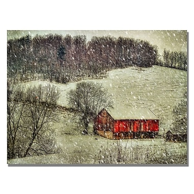 Trademark Fine Art Lois Bryan 'Snowy Cabin' Canvas Art 22x32 Inches