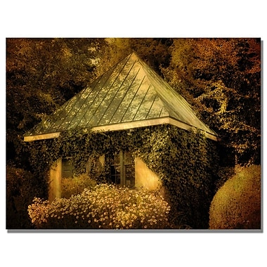 Trademark Fine Art Lois Bryan 'Forgotten Shed' Canvas Art 35x47 Inches