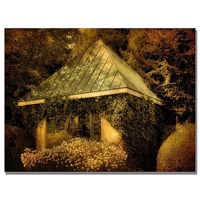 Trademark Fine Art Lois Bryan 'Forgotten Shed' Canvas Art 18x24 Inches