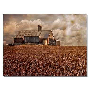 Trademark Fine Art Lois Bryan 'Light for the Farm' Canvas Art 30x47 Inches