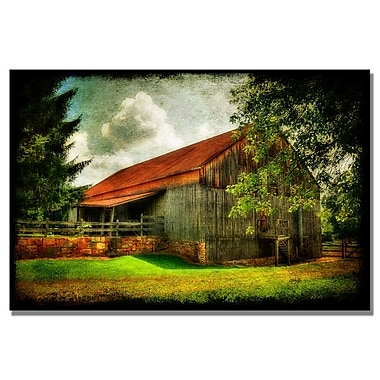 Trademark Fine Art Lois Bryan 'Our Old Barn' Canvas Art 16x24 Inches