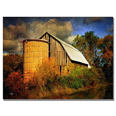Trademark Fine Art Lois Bryan 'Family Farm II' Canvas Art 30x47 Inches