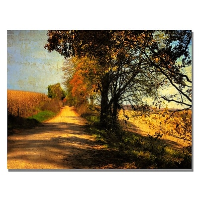 Trademark Fine Art Lois Bryan 'Follow Your Road' Canvas Art 30x47 Inches