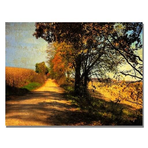 Trademark Fine Art Lois Bryan 'Follow Your Road' Canvas Art 18x24 Inches