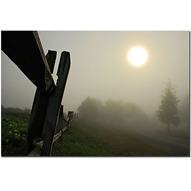 Trademark Fine Art Foggy Morning by Lois Bryan Canvas Art Ready to Hang 16x24 Inches