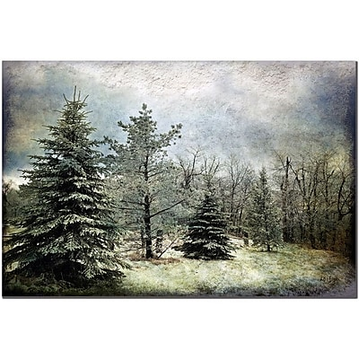Trademark Fine Art Lois Bryan 'Frosty' Canvas Art Ready to Hang 14x19 Inches