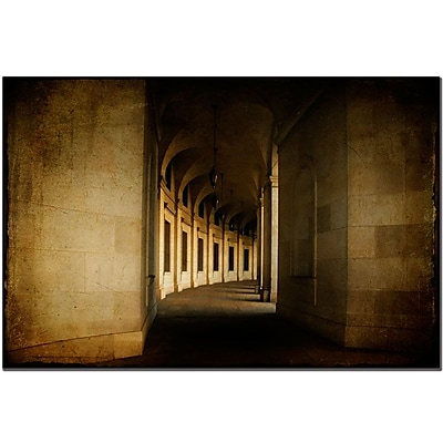 Trademark Fine Art Lois Bryan 'Hallowed Halls'' Canvas Art Ready to Hang 22x32 Inches