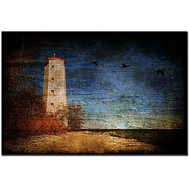 Trademark Fine Art Presqu'ile Lighthouse by Lois Bryan Canvas Art 16x24 Inches