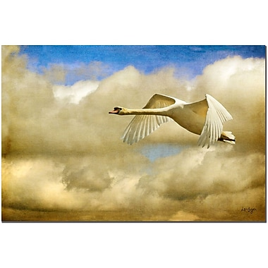 Trademark Fine Art Swan Song by Lois Bryan Canvas Art Ready to Hang 16x24 Inches