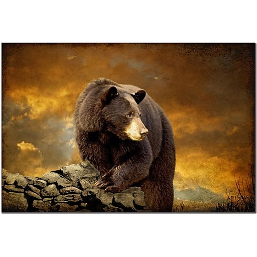 Trademark Fine Art The Bear Went Over the Mountain by Lois Bryan Art 16x24 Inches