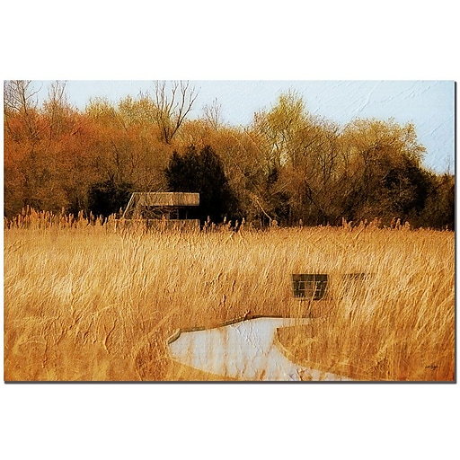 Trademark Fine Art Lois Bryan 'The Marsh in April' Canvas Art  22x32 Inches