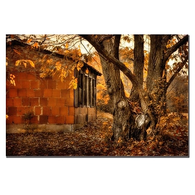 Trademark Fine Art Lois Bryan 'Autumn on the Farm' Canvas Art 16x24 Inches