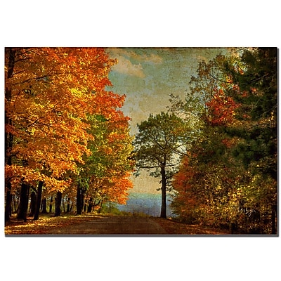 Trademark Fine Art Lois Bryan 'Autumn on the Mountain'' Canvas Art 22x32 Inches