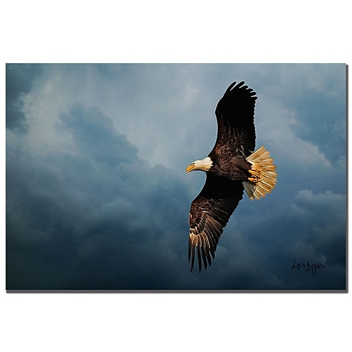 Trademark Fine Art Lois Bryan 'Eagle in the Sky' Canvas Art 22x32 Inches