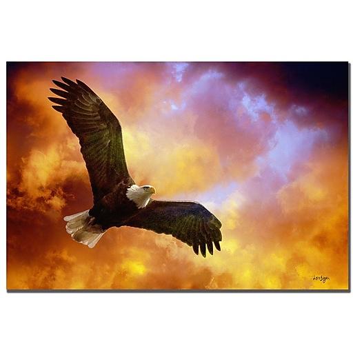 Trademark Fine Art Lois Bryan 'Flight of the Eagle' Canvas Art 16x24 Inches
