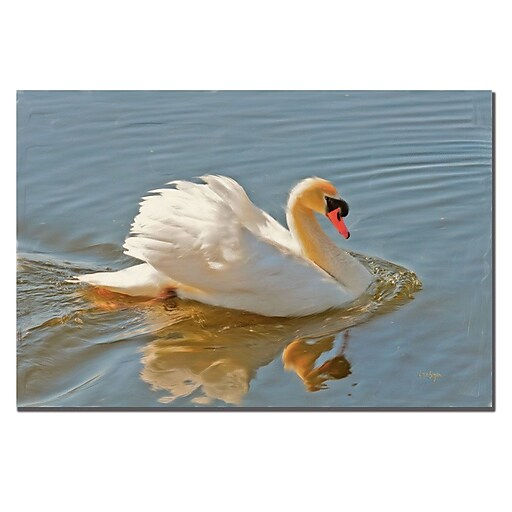Trademark Fine Art Lois Bryan 'Floating Swan' Canvas Art 30x47 Inches