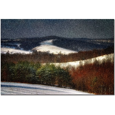Trademark Fine Art Lois Bryan 'Mountain Snow Storm' Canvas Art 16x24 Inches