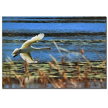 Trademark Fine Art Lois Bryan 'Skimming Swan'' Canvas Art