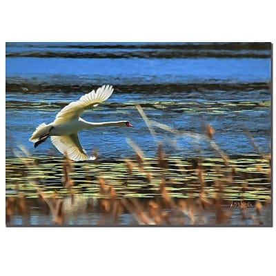 Trademark Fine Art Lois Bryan 'Skimming Swan'' Canvas Art 22x32 Inches