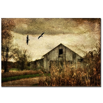 Trademark Fine Art Lois Bryan 'Wings of Change' Canvas Art 22x32 Inches